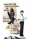 La maison des sept faucons