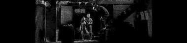 Héritage du film Noir [Chrono]